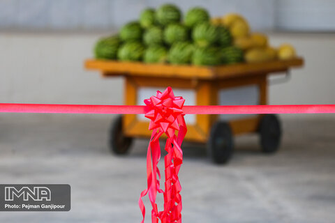 بازارچههای سبزی و میوه و تره بار به زودی افتتاح میشود