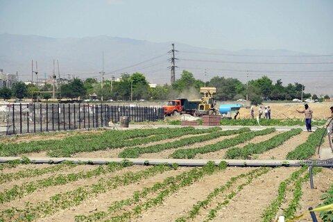 احداث پارکهای محلهای در قائمیه و دستگرد