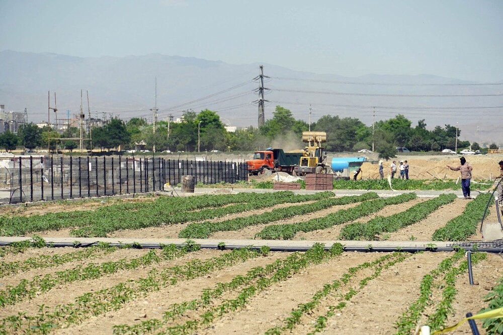 نخستین بوستان کشاورزی شهری ایران در مشهد به بهرهبرداری میرسد