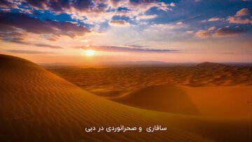 سافاری و صحرانوردی در دبی یکی از هیجان انگیزترین بخشهای سفر!
