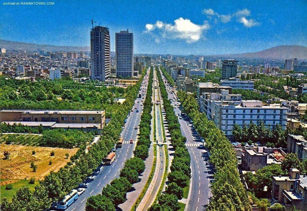 خشک شدن معمایی ۷ درخت در بلوار کشاورز تهران