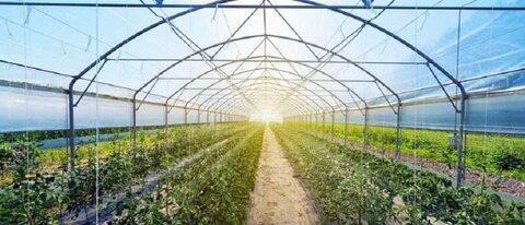 چارهاندیشی برای اراضی رها شده شهر با طراحی گلخانه ایرانی
