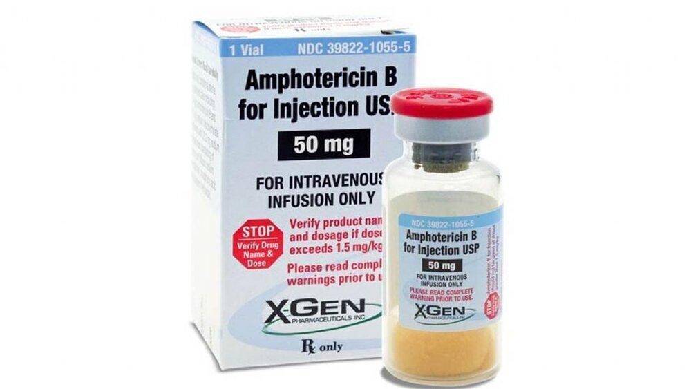 داروی کمیاب قارچ سیاه چیست؟+ عوارض و قیمت آمفوتریسین بی