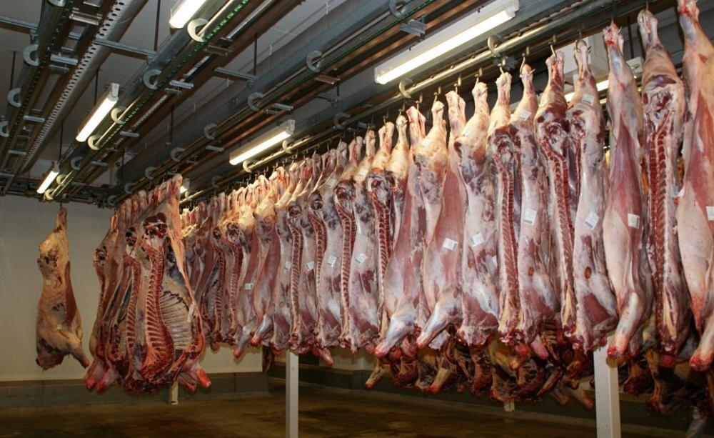 جدیدترین قیمت گوشت قرمز