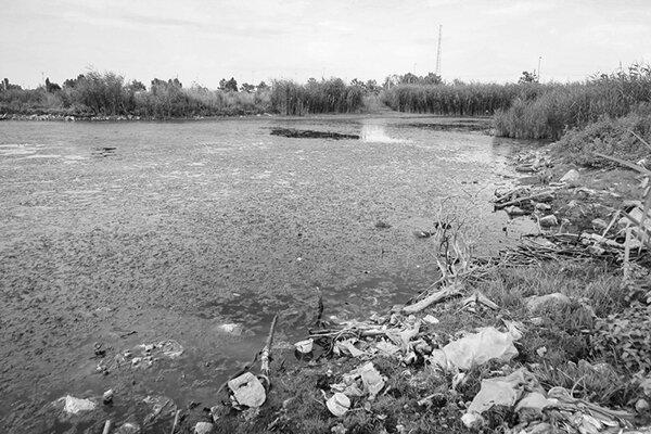 تالاب شیلات آستارا در آستانه نابودی
