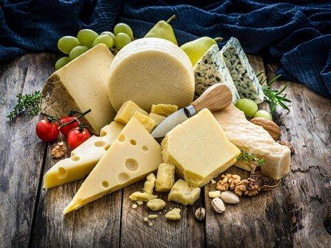 خواص پنیر + انواع، کاربرد، مضرات و فواید پنیر صبحانه