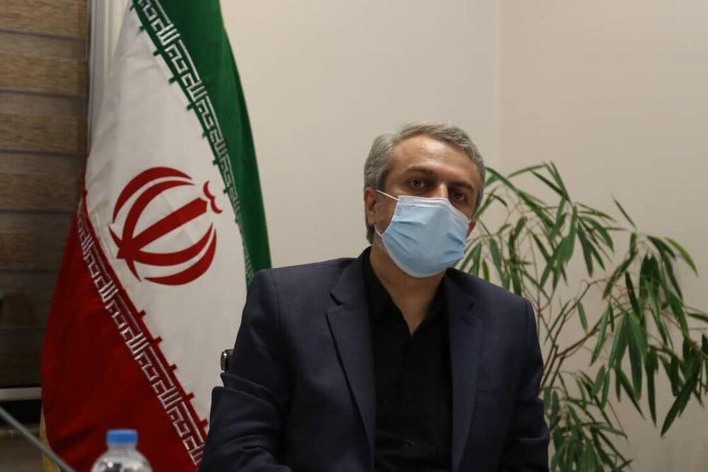 فاطمیامین: وزارت صمت به دنبال تصدیگری نیست