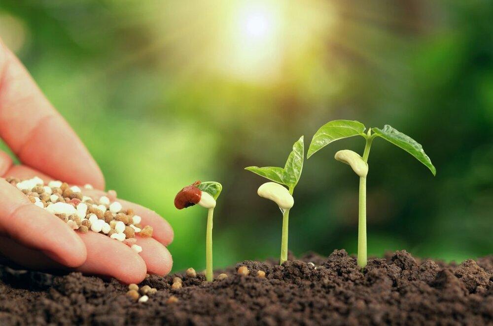 تولید خاک ارگانیک از کاه و کلش