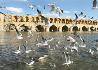 زایندهرود 28 دی ماه دوباره جاری میشود/ 5 درصد مديريت مصرف آب در مصارف اصفهان